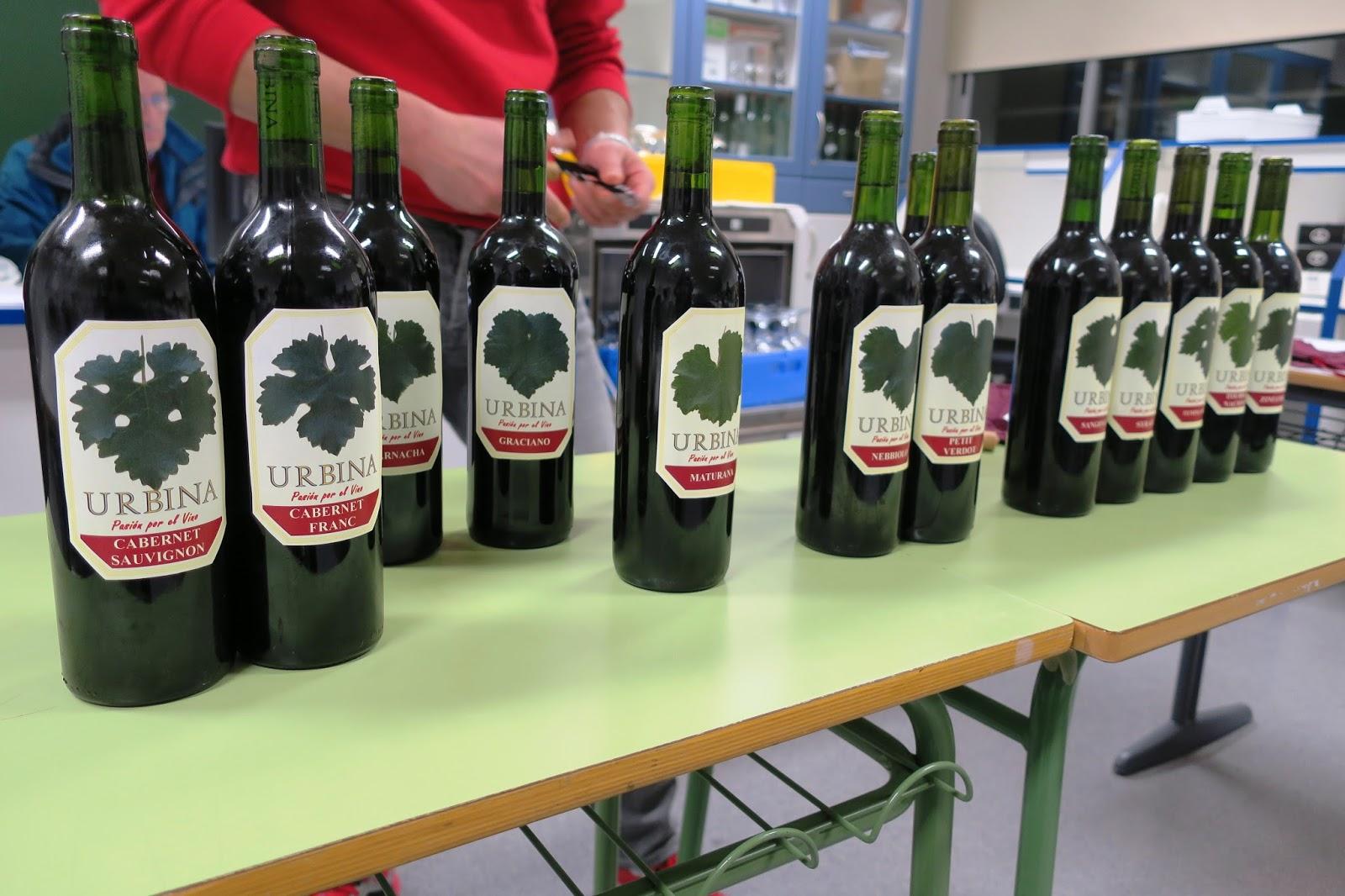 Urbina Vinos Blog: Viñedo Experimental con Diferentes Variedades de ...