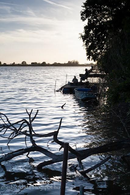 Horgászok várnak a kapásra az Atkai-Holt-Tiszánál napnyugtakor