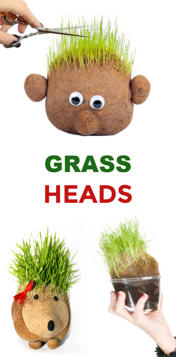 GRASS HEADS FOR KIDS: Kids love growing grass seed because it is easy to sprout and grows quickly.  These growing grass heads are super fun for spring & kids can even style their plant person's hair! #grassheadsforkids #grassheads #grassheadcraft #grasshaircupskids #kidsgardencrafts #springcrafts #gardeningforkidspreschool