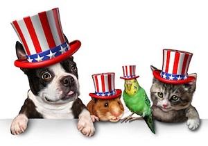 dog-hamster-cat-parekeet