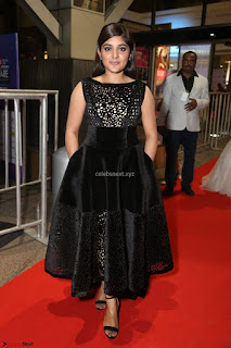 Niveda Thomas Black Sleeveless Cute Dress at 64th Jio Filmfare Awards South 2017 ~  Exclusive 070.JPG