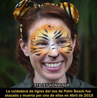 ataque-tigre-cuidadora