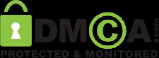 Cara Melindungi Artikel Dengan DMCA Protection