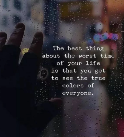 You Get to See the True Colors of Everyone | Quotes and Sayings