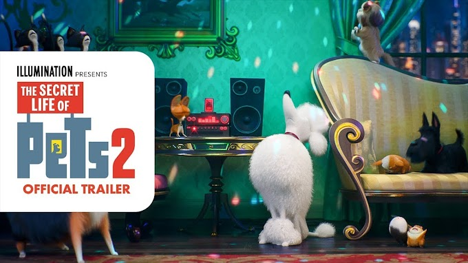 Watch The Secret Life of Pets 2 (2019)