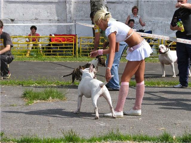 Dog Show Handler Attire