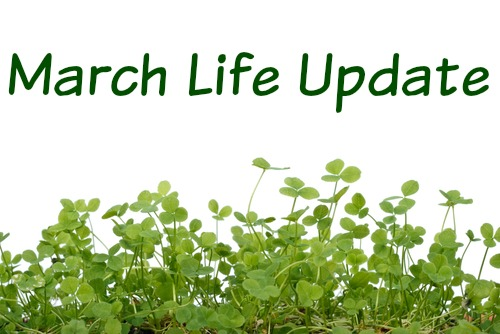 http://lostrightdirection.blogspot.com/2016/04/life-update-march.html