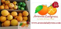 Logo Giveaway Arancia Ladyrosa: vinci gratis confezione agrumi misti, paste di mandorle e salsa si pomodoro