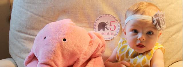mengasuh bayi umur 5 bulan