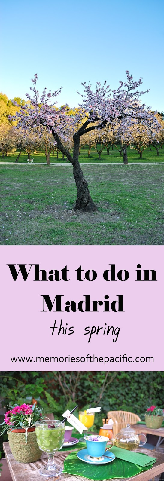 what to do in Madrid this spring primavera
