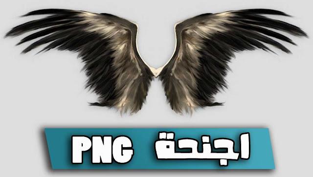 أجنحة png