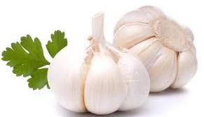 Khasiat Bawang putih yang penting untuk kesehatan dan kandungan didalamnya