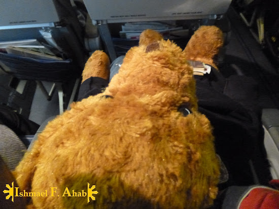 Bear Ahab in Philippine Airlines