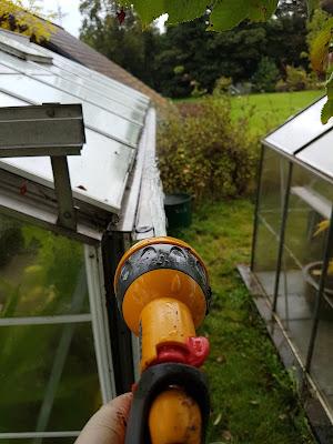 sorting greenhouses