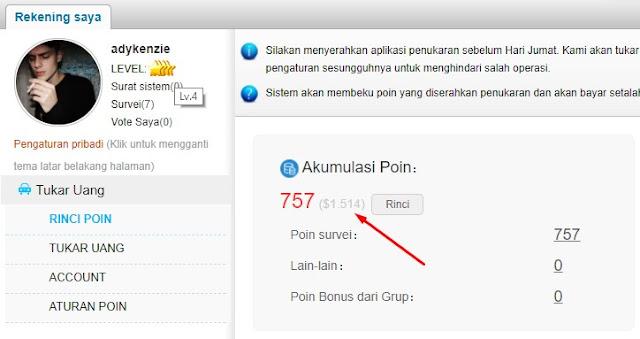 Cari Uang dari Internet survey online