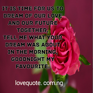 Good Night SMS For My Love