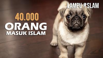 Allahu Akbar!! 40.000 Orang Masuk Islam Melihat Tingkah Anjing Ini  - Simak Videonya