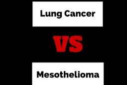 Lung Cancer Vs Mesothelioma