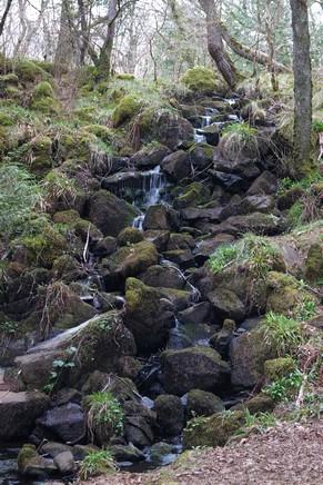 écosse highlands île mull tobermory randonnée cascade aros park