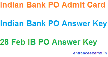 Indian Bank PO Mains Answer Key 2017