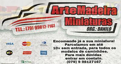 ArteMadeira Miniaturas