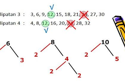 Soal Matematika Kelas 4 : Kelipatan dan Faktor