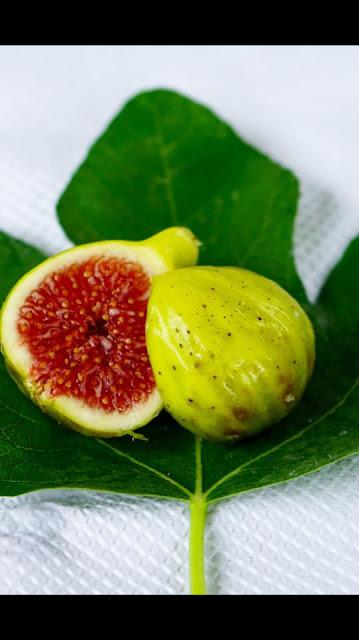 SAN MARTINI Figs