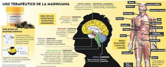 marihuana y dolor