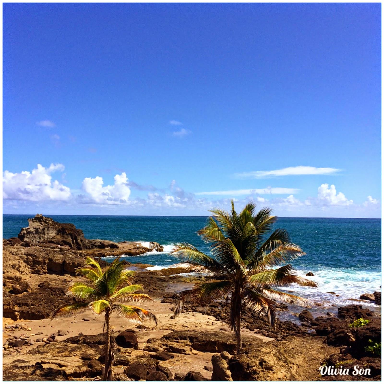 Randonnée Caravelle Martinique