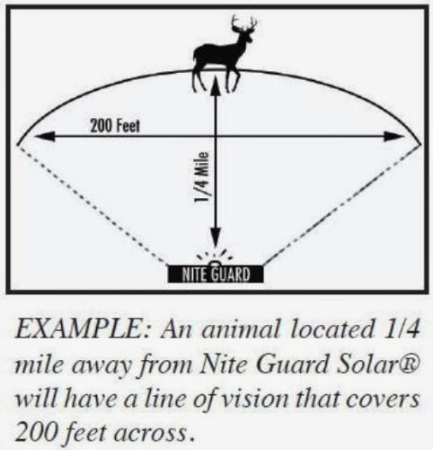 A Constant Flash Of Light To All Animals That Hunt Or Feed At Night They Have Been Discovered Are Being Watched