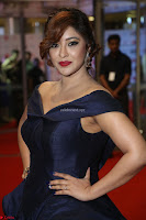 Payal Ghosh aka Harika in Dark Blue Deep Neck Sleeveless Gown at 64th Jio Filmfare Awards South 2017 ~  Exclusive 145.JPG