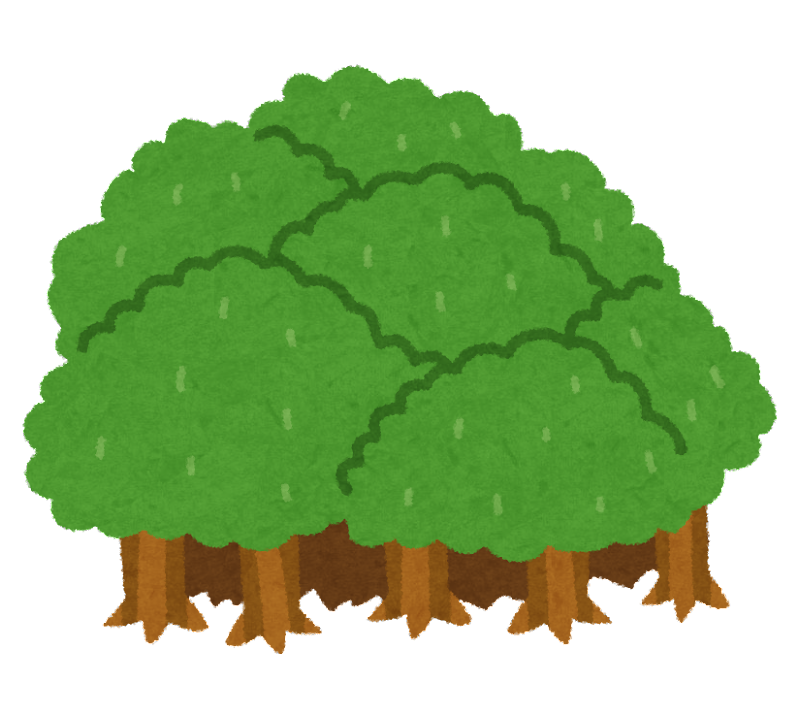 森のイラスト | かわいいフリー素材集 いらすとや