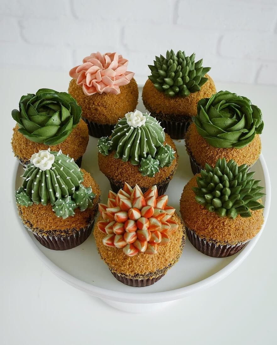 01-Cacti-Succulent-Plants-Leslie-Vigil-Themed-Decorated-Cakes-www-designstack-co