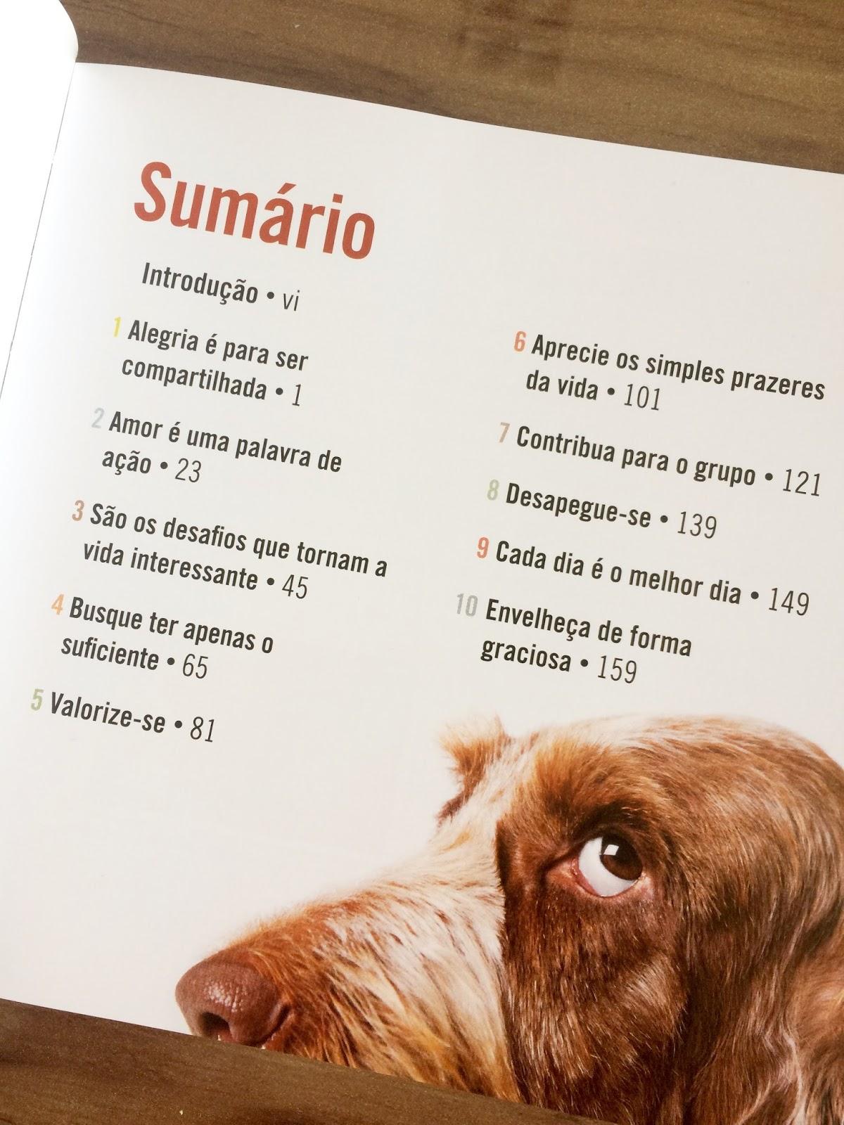 Casos Acasos E Livros Se Meu Cachorro Falasse Lições Que Podemos