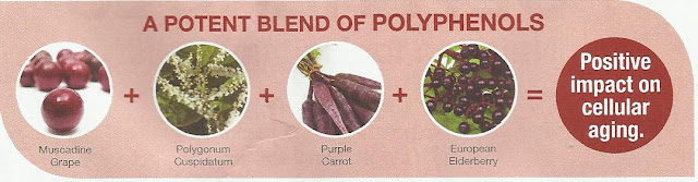 polyphenols products; protect and repair DNA; increase cell energy; cell defence; telomere; Vivix Shaklee