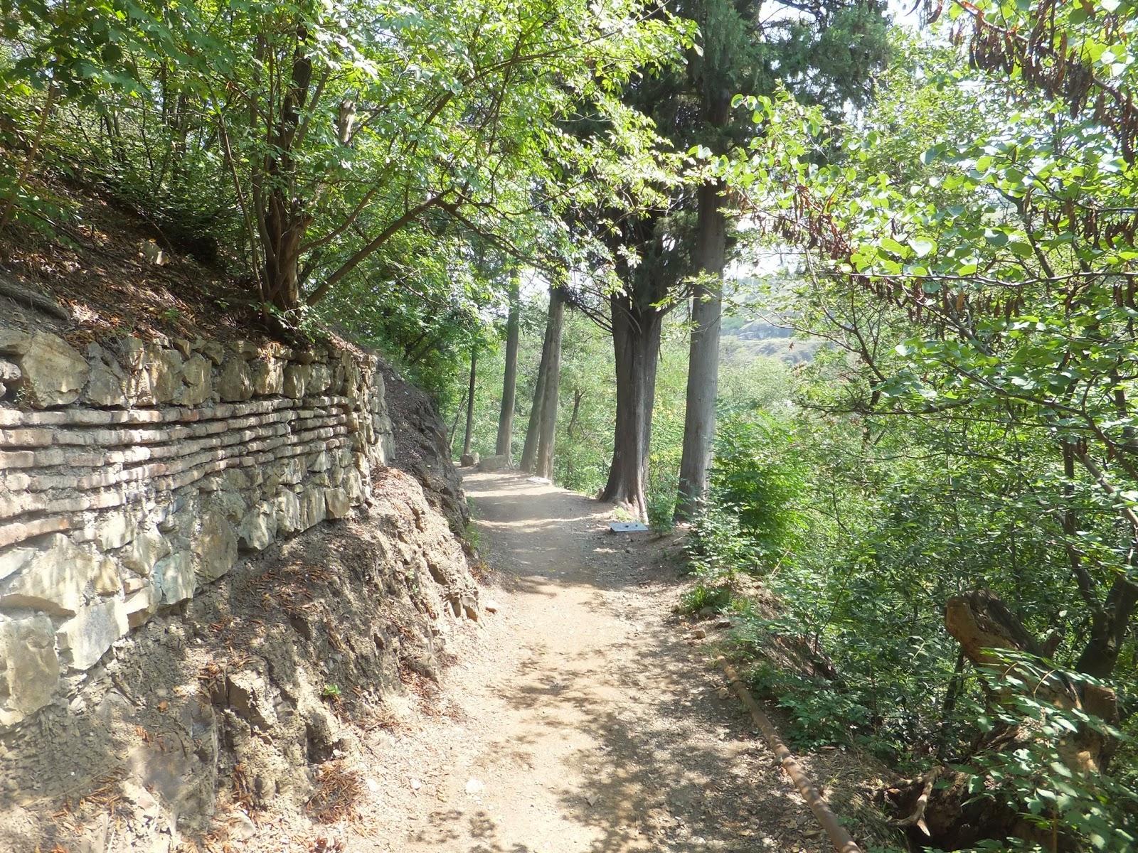Тераса в ботаническом саду Тбилиси