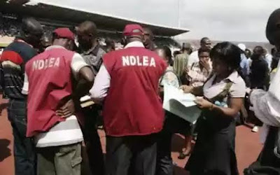 NDLEA Arrests Exporter and Clearing Agents Over Attempt To Export Narcotics Worth N220m
