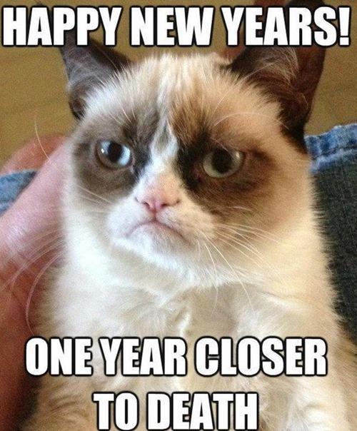 funny-new-year-whatsapp-status-dp