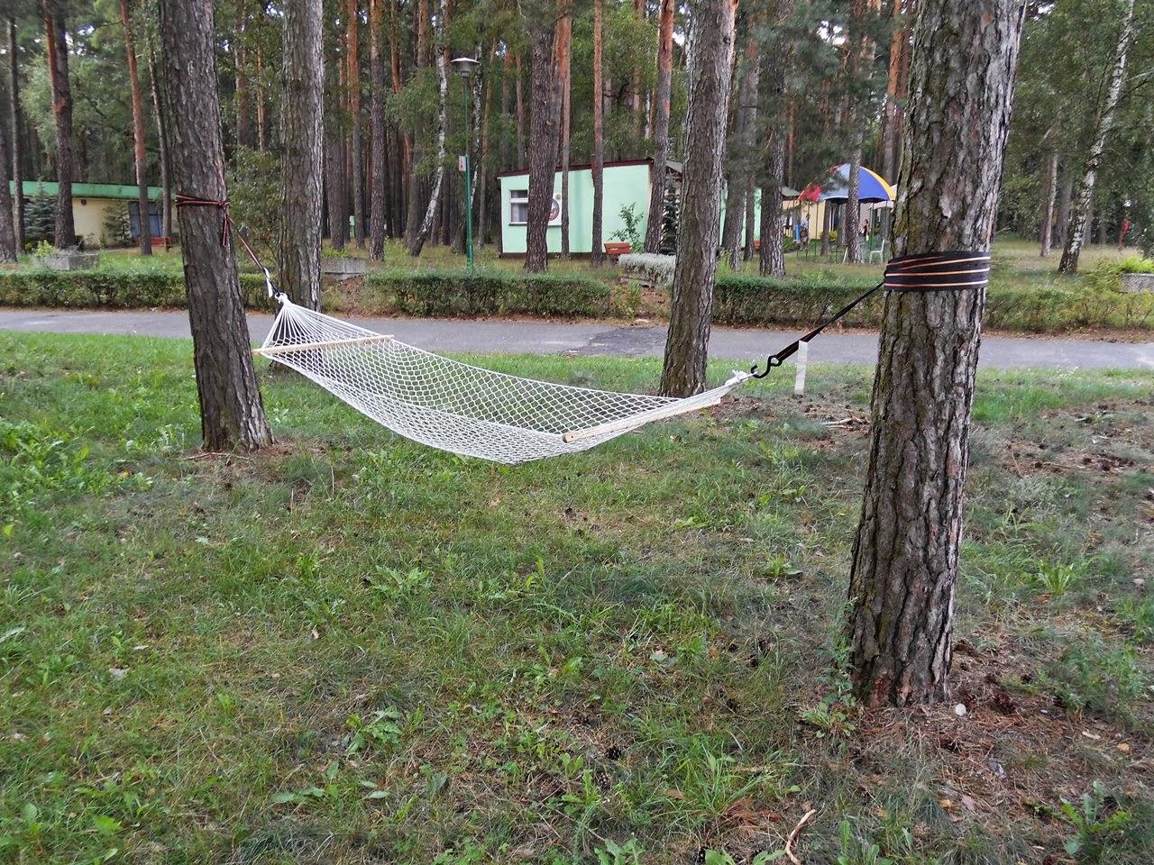 wypoczynek, relaks, woda, las, lubuskie