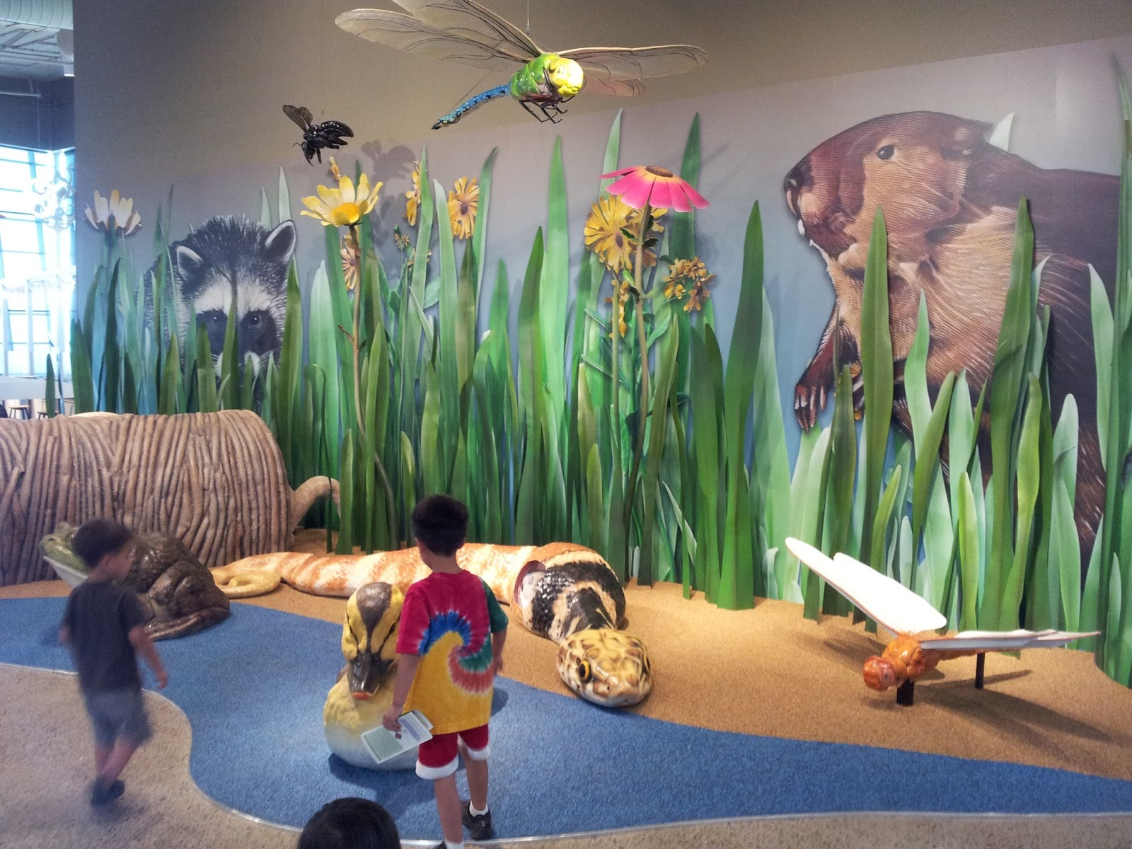 Chaos in my Ark: Wetlands Nature Center and Park - Free ...