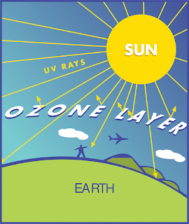 Preservation of the Ozone layer; Our Score Card