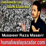 http://www.humaliwalayazadar.com/2016/10/musaveer-raza-masavir-nohay-2017.html