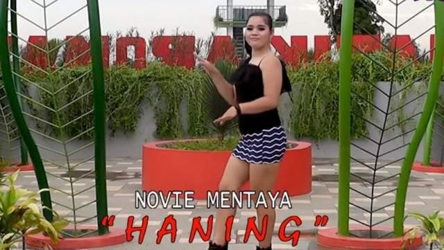 Novie Mentaya - Haning
