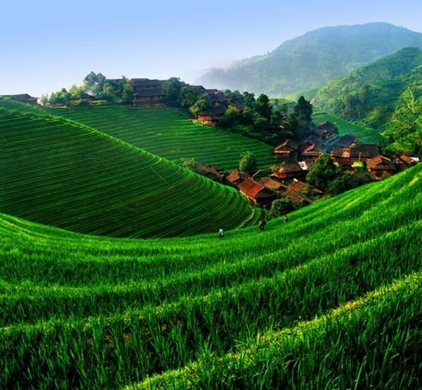 Beautiful Nature House: Cool Nature Pictures: China