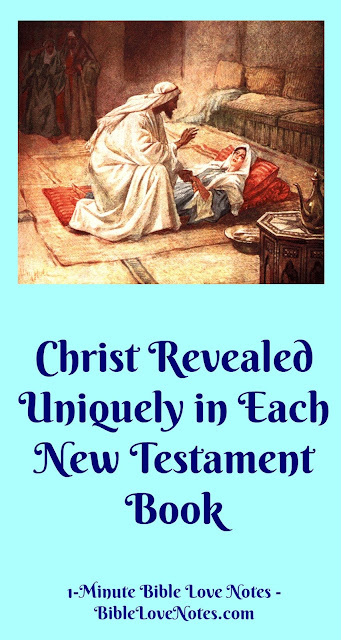 Christ Uniquely Revealed in Every New Testament Book. Inspiring!