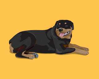 HOW-TO-DRAW-A-ROTTWEILER