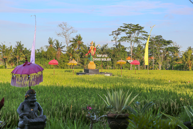 What to do in Bali warung dewa malen ubud restaurant bali indonesia
