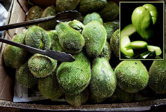 gal chayote spiny and plain - CHAYOTE SQUASH FRESH (click image to view)