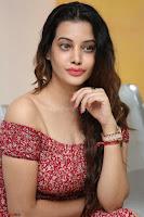 Diksha Panth in a Deep neck Short dress at Maya Mall pre release function ~ Celebrities Exclusive Galleries 003.JPG