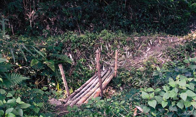 bamboo-foot-bridge-nagaland-photos